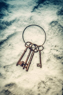Magdalena Russocka BUNCH OF KEYS ON RING Miscellaneous Objects