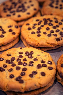 Evelina Kremsdorf CLOSE UP OF CHOCOLATE CHIP COOKIES Miscellaneous Objects