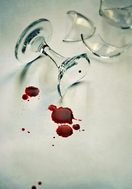 Lyn Randle BROKEN WINE GLASS WITH BLOOD Miscellaneous Objects