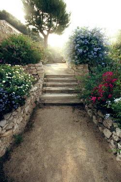 ILINA SIMEONOVA GARDEN PATH WITH STEPS AND FLOWERS Paths/Tracks