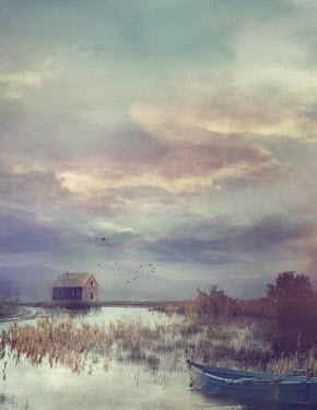 Drunaa House in swamp Houses