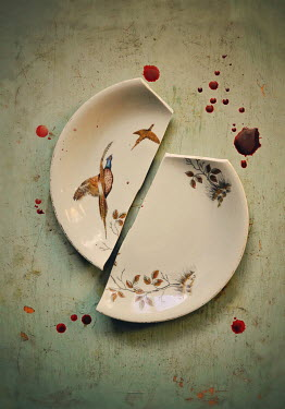 Lyn Randle BROKEN VINTAGE PLATE WITH BLOOD Miscellaneous Objects