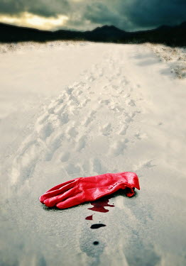 Lyn Randle LADIES GLOVE WITH BLOOD ON SNOW Miscellaneous Objects