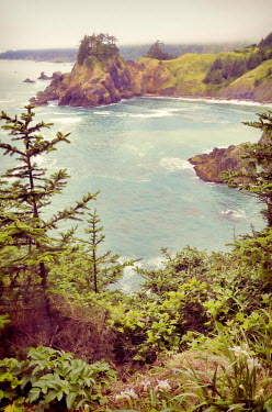 Jill Battaglia COVE ON THE OREGON COAST Seascapes/Beaches