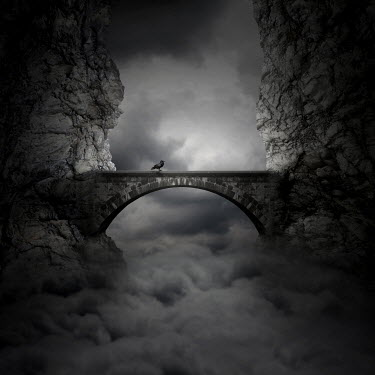 Zoltan Toth BIRD ON BRIDGE WITH CLOUDS Bridges