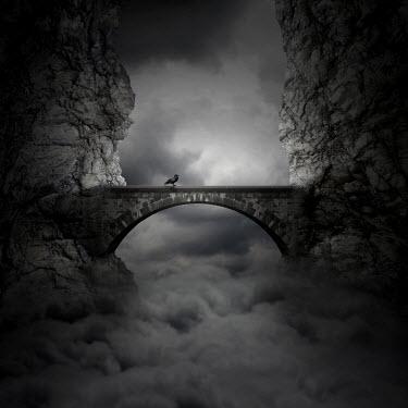 Zoltan Toth BIRD ON BRIDGE WITH CLOUDS Bridges