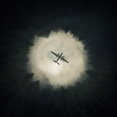 Zoltan Toth OLD PLANE FLYING OVER FOREST Miscellaneous Transport