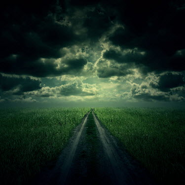 Zoltan Toth COUNTRY ROAD WITH STORMY SKY Paths/Tracks