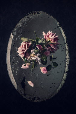 Amy Weiss PINK ROSES ON OVAL MIRROR Miscellaneous Objects