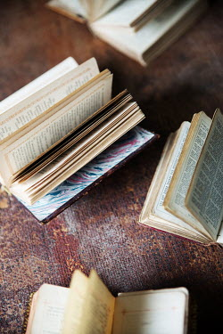 Maria Petkova OLD BOOKS LYING OPEN ON TABLE Miscellaneous Objects