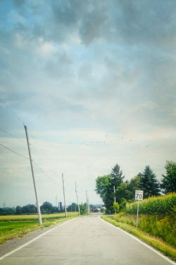 Sandra Cunningham EMPTY COUNTRY ROAD IN SUMMER Paths/Tracks