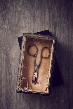 Andy & Michelle Kerry OLD BLOODY SCISSORS IN BOX Miscellaneous Objects