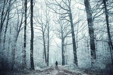 Raphaelle Monvoisin MAN STANDING IN WINTRY FOREST Men