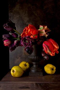 Allan Jenkins FLOWERS IN VASE WITH FRUIT Flowers