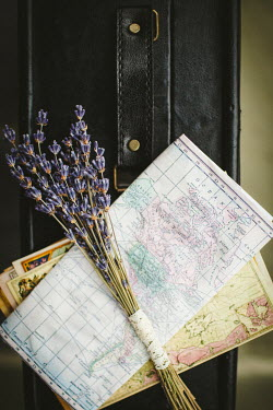Susan O'Connor LAVENDER ON MAPS WITH SUITCASE Flowers