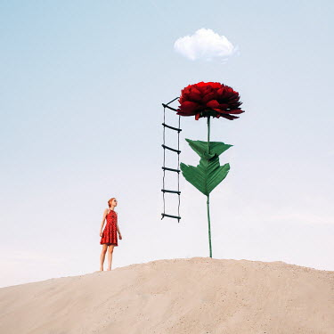 Jovana Rikalo SURREAL WOMAN WITH LADDER AND FLOWER Women