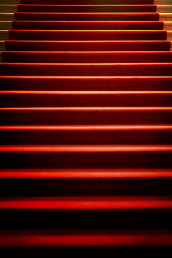 Miguel Sobreira RED CARPET ON STAIRS Building Detail