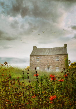 Sandra Cunningham STONE COTTAGE BY THE SEA Houses