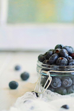 Stephanie Frey BLUEBERRIES IN GLASS JAR WITH MUSLIN Miscellaneous Objects
