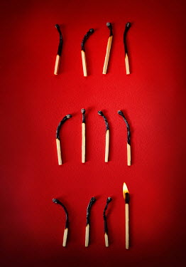Lyn Randle BURNT MATCHES AND ONE ALIGHT Miscellaneous Objects