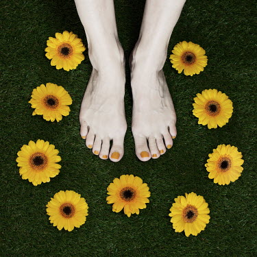 Manuela Deigert WOMAN'S FEET SURROUNDED BY FLOWERS Body Detail