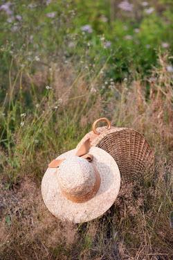 Ysbrand Cosijn HAT AND BASKET IN FIELD Miscellaneous Objects
