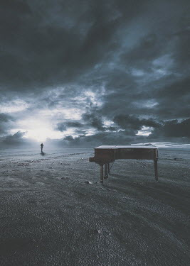 Michael Vincent Manalo MAN AND PIANO ON STORMY BEACH Men