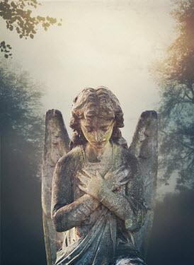 Mark Owen STONE ANGEL IN MISTY GARDEN Statuary/Gravestones