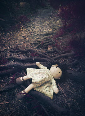 Mark Owen DOLLY LYING ON TREE ROOTS IN PATH Miscellaneous Objects