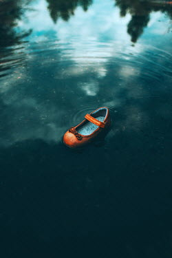 Ildiko Neer Child's shoe in pond Miscellaneous Objects
