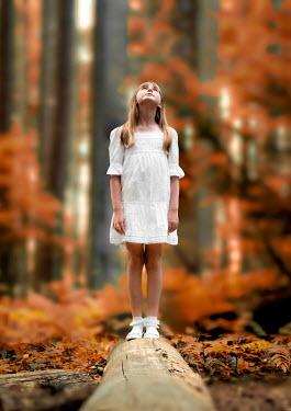 Elisabeth Ansley GIRL ON LOG IN AUTUMN FOREST Children