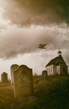 Sandra Cunningham CHURCH GRAVEYARD WITH BIRD FLYING OVER Statuary/Gravestones