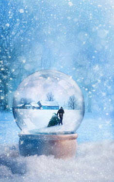 Sandra Cunningham SNOW GLOBE IN WINTER SCENE Miscellaneous Objects