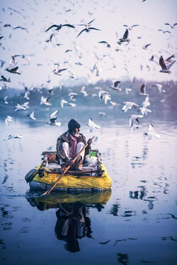 Ashraful Arefin OLD MAN ON RAFT WITH BIRDS Old People