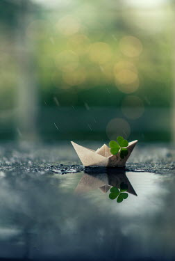 Ashraful Arefin PAPER BOAT WITH CLOVER LEAF Miscellaneous Objects