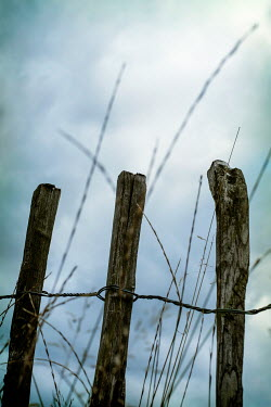 Benjamin Harte OLD WOODEN FENCE WITH WIRE AT DUSK Miscellaneous Objects