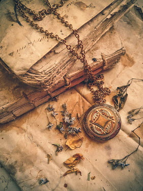 Jane Morley golden locket with old books Miscellaneous Objects