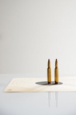 Maria Petkova TWO BULLETS ON PAPER TARGET Weapons