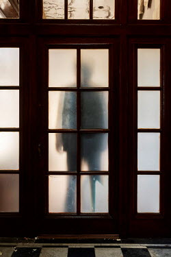 Clayton Bastiani FIGURE STANDING BEHIND FROSTED GLASS Body Detail