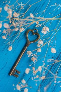 Mohamad Itani HEART SHAPED KEY ON BLUE BACKGROUND Miscellaneous Objects
