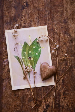 Magdalena Wasiczek WOODEN HEART ON PHOTOGRAPH Miscellaneous Objects