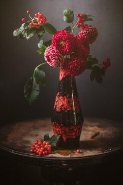 Magdalena Wasiczek RED FLOWER IN RED VASE Flowers