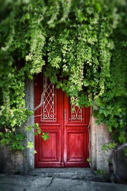 Kyle Stubbs OVERGROWN RED DOOR WITH CREEPER Building Detail