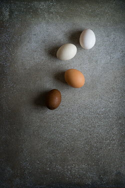 Galya Ivanova FOUR EGGS FROM ABOVE Miscellaneous Objects