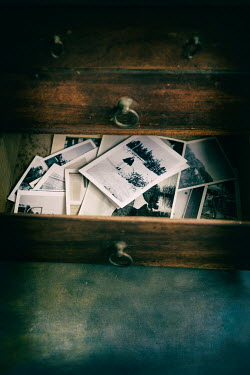 Jill Ferry CABINET DRAWER WITH OLD PHOTOGRAPHS Miscellaneous Objects