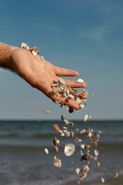 Felicia Simion MALE HAND DROPPING SHELLS BY SEA Men