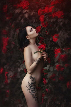Beata Banach NAKED WOMAN BY RED ROSE BUSH Women