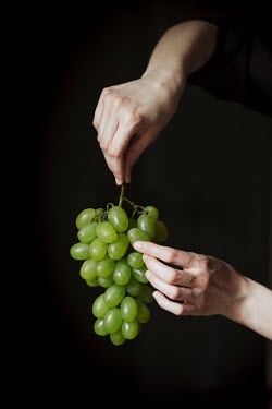 Alberto Bogo HANDS HOLDING GREEN GRAPES Body Detail