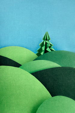 Kelly Sillaste PAPER CUT OUT OF TREE AND HILLS Miscellaneous Objects
