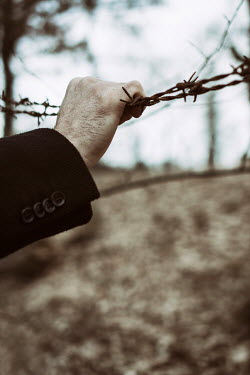 Mohamad Itani HAND HOLDING BARBED WIRE FENCE Body Detail